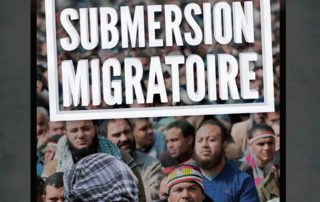 Stop à la submersion migratoire !